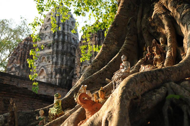 Sukhothai, Historical Park, Thailand, UNESCO-Weltkulturerbe, Wat Sri Sawai, Tempel, Ruinen, Ausflüge, Reisetipps, Reisen mit Kindern, Babys, Kleinkindern, Elternzeit, Asien, Reiseberichte, Reiseblogger, www.wo-der-pfeffer-waechst.de
