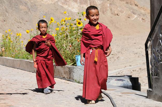Phyang, Phyang-Gompa, Kloster, junge Mönche, Ladakh, Indien, indischer Himalaya, Himalaja-Gebirge, Leh, Indus-Tal, Reisetipps, Rundreisen, Asien, Reiseberichte, Reiseblogger, www.wo-der-pfeffer-waechst.de