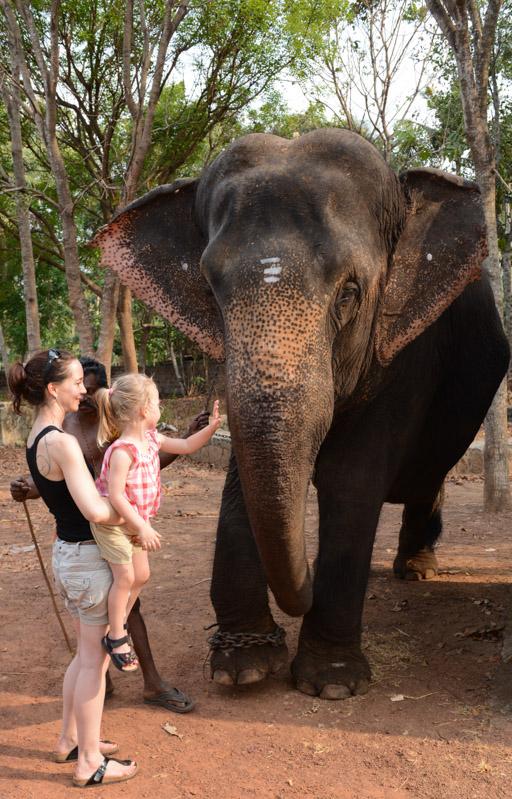 Elefantenreiten, Varkala, Indien, Südindien, Kerala, Reisetipps, Reisen mit Kindern, Rundreisen, Asien, Reiseberichte, Reiseblogger, www.wo-der-pfeffer-waechst.de