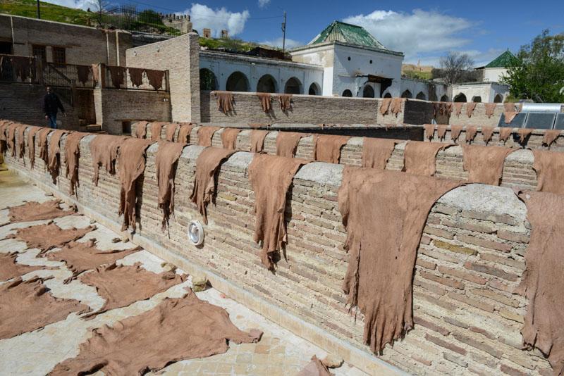 Fes, Fès, Fez, Marokko, Tierhäute, trocknen, Gerbereien, Tanneries, Färberviertel, Medina, Altstadt, Reisebericht, www.wo-der-pfeffer-waechst.de