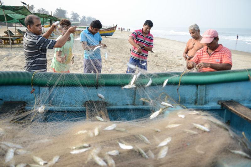 Fischer, Arambol Beach, Goa, Strände, Norden, Strand, Nordgoa, Indien, India, Südasien, Bilder, Fotos, Reiseberichte, www.wo-der-pfeffer-waechst.de