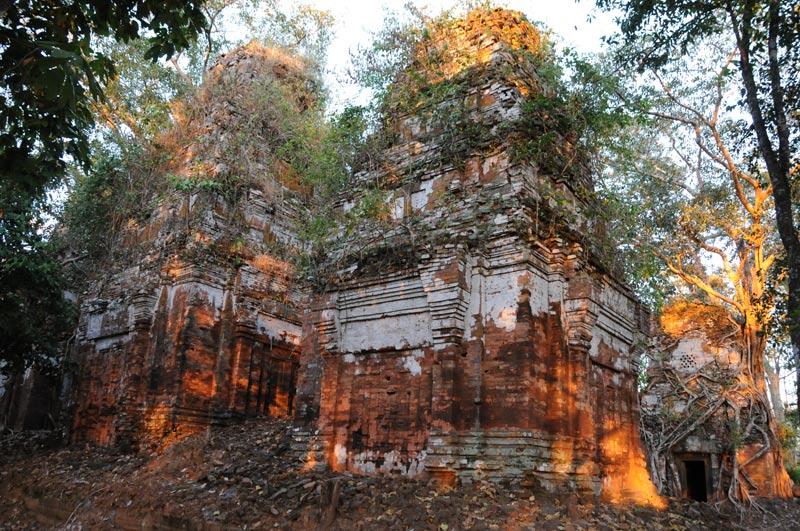 Koh Ker, Khmer-Tempel, Baumwurzeln, Kambodscha, Reisebericht, Cambodia, Reisetipps, Backpacking, Südostasien, Bilder, Foto: Heiko Meyer, www.wo-der-pfeffer-waechst.de