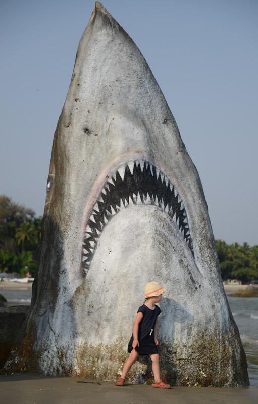 Reisen mit Kindern, Palolem Beach, Goa, weißer Hai, Felsen, Strände, Strand, Südgoa, Indien, India, Südasien, Bilder, Fotos, Reiseberichte, Foto: Heiko Meyer, www.wo-der-pfeffer-waechst.de