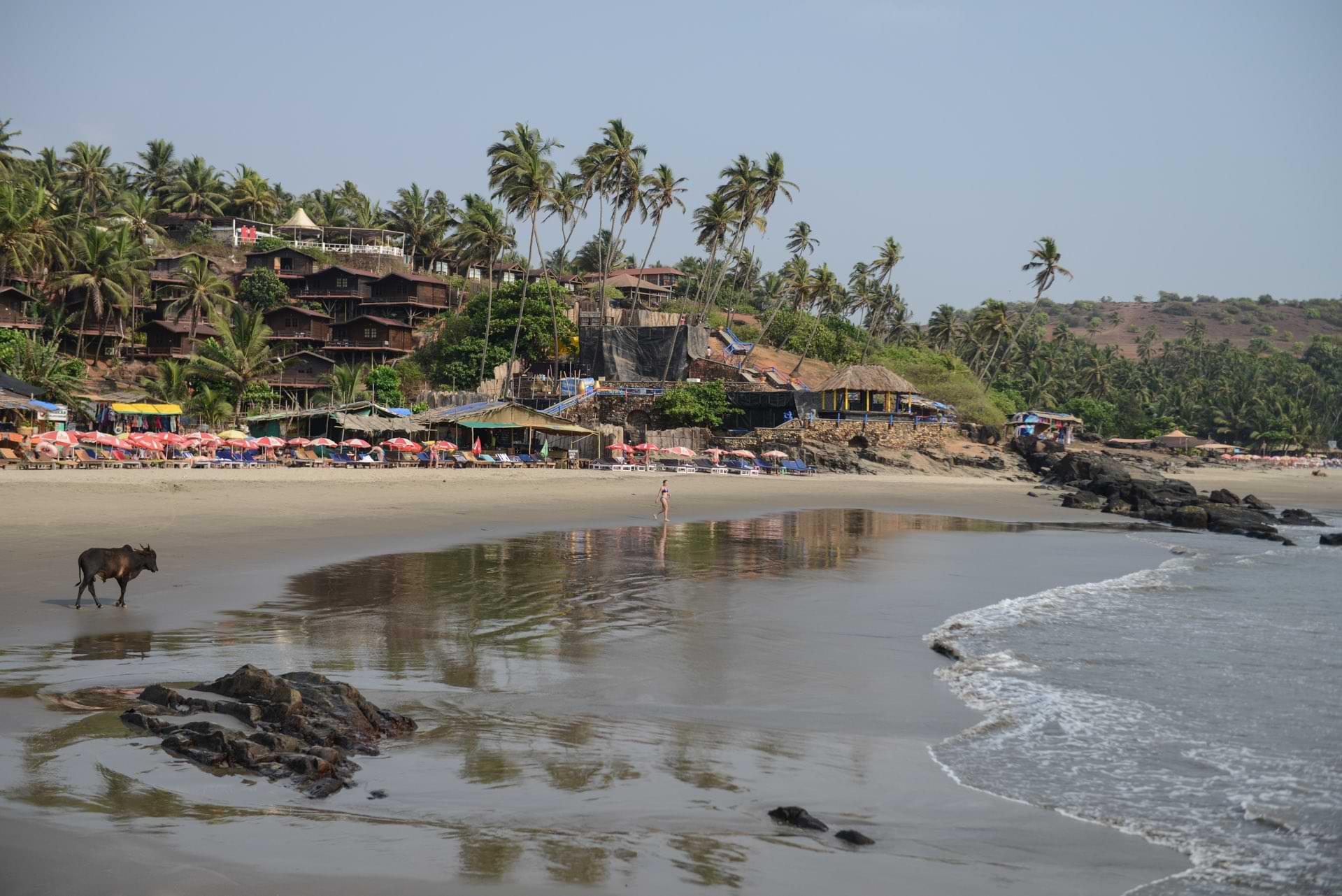 Vagator Beach, Ozran Beach, Little Vagator Beach, Goa Beach Guide, die schönsten Strände von Norden nach Süden, Strand, best beaches, Nordgoa, Südgoa, Indien, India, Beach-Hopping, Reisen mit Kindern, Indien mit Kindern, Südasien, Bilder, Fotos, Reiseberichte, www.wo-der-pfeffer-waechst.de